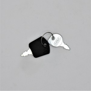 Westwood/Countax Tractor Ignition Key Pair 52813000